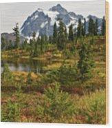 Shuksan Autumn Wood Print