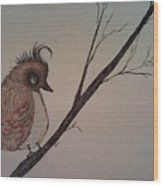 Shy Bird Wood Print by Ginny Youngblood