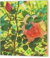 Sketchy Rose Wood Print