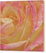 Shy Yellow Rose Wood Print