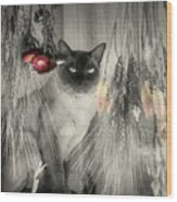 Siamese Cat In Black And White Wood Print