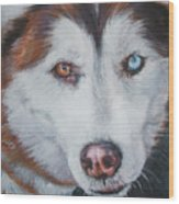 Siberian Husky Red Wood Print