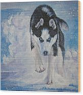 Siberian Husky Run Wood Print
