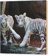 Siberian Tiger Cubs Wood Print