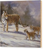 Siberian Tiger Family Wood Print