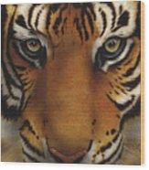 Siberian Tiger I Wood Print