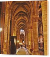 Side Hall Notre Dame Cathedral - Paris Wood Print