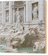 Side View Of The Trevi Fountain In Rome Wood Print