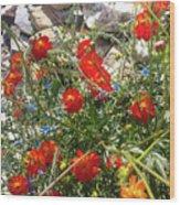 Sidewalk Flowers Wood Print