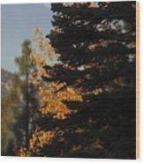 Sierra Autumn Moonset Wood Print