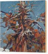 Sierra Juniper Wood Print