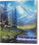 Sierra Mountain Meadow   Wood Print