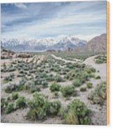 Sierra Nevada Front Wood Print