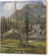 Sierra Nevada Mountains Wood Print