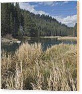 Sierra Serenity Wood Print