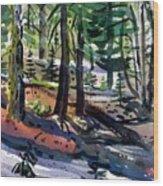 Sierra Snowdrifts Wood Print