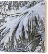 Sierra Winter Wood Print