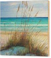 Siesta Key Beach Dunes  Wood Print