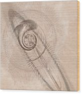 Sigil Wood Print