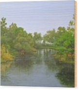 Signed Fluss By Samuel Matheis Acrylic River Holzminde, Holzminden, Germany. Wood Print