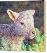 Silence Of The Lamb Wood Print