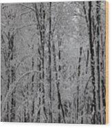 Silence Of Winter Wood Print