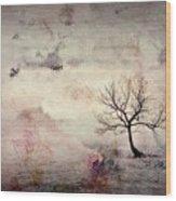 Silence To Chaos - 5502c2v Wood Print