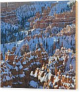 Silent City Winter Wood Print