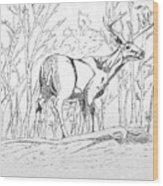 Silent Forrest Wood Print