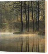 Silent Light. Wood Print