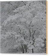 Silent White Wood Print