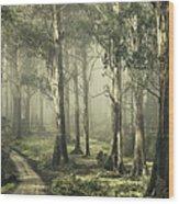 Silently Still Wood Print