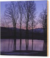 Silhouette At The Pond Wood Print
