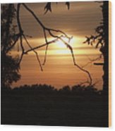 Silhouette Wood Print