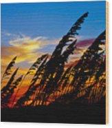 Silhouette  Oats Wood Print