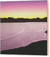 Silhouette Of Lone Cardon Cactus Plant Wood Print