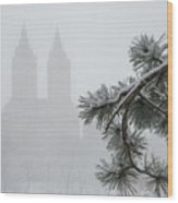 Silhouette Of The Eldorado Building Through Snow With Central Pa Wood Print