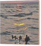 Silhouetted Ducks Wood Print