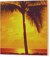 Silhouetted Palm Wood Print
