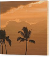 Silhouetted Palms Wood Print