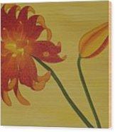 Silicum Langfoliom  Wood Print
