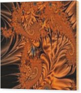 Silk In Orange Wood Print