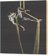 Silk Intensity Wood Print