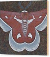 Silk Moth Wood Print