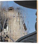 Silken Fountain Curtain -  Wood Print
