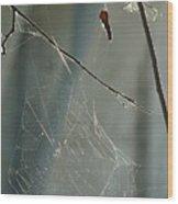 Silken Home Wood Print