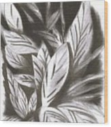 Silky Wood Print