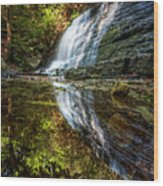 Silky Reflections Wood Print