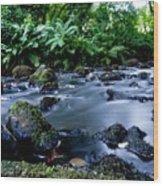 Silky Waters Wood Print