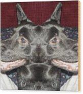 Silly Dog Wood Print